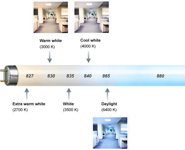Färgtemperatur hos lysrör