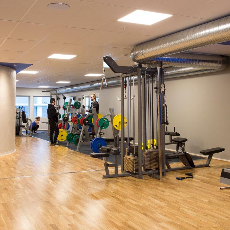 LED platta gym