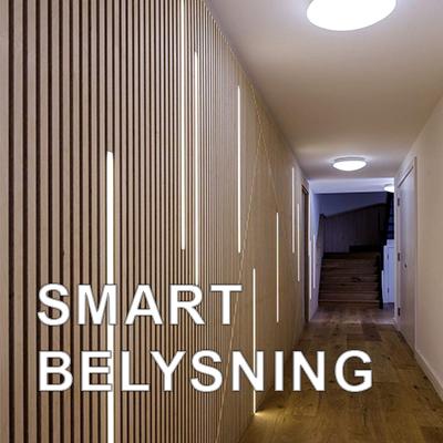 Smart belysning för butik, restaurang, hotell & kontor